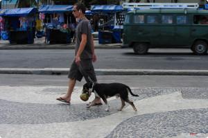 0005 Brazil 2012 IMG_0048